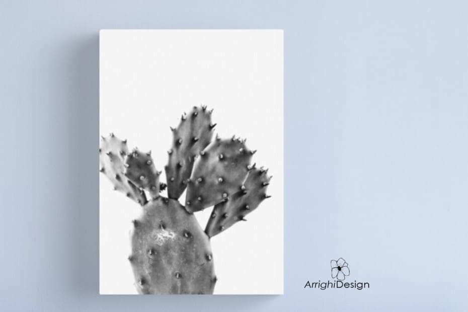 photo print on canvas cactus